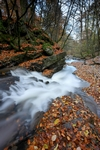 Waterfall, Birks of Aberfeldy, Tayside by Dave Banks