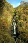 Black Spout, Pitlochry - Dave Banks - Scottish Landscape Photography