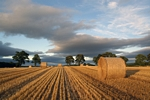 Straw bales nr Perth, Tayside by Dave Banks