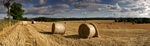 Straw bales nr Meikleour, Tayside by Dave Banks